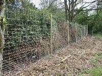 Ogrodzenie z siatki leśnej